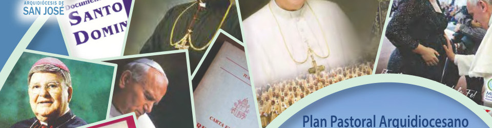 Plan Pastoral Arquidiocesano 2015-2020